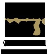 logo-vertical2